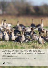Cover Pink-footed Goose Adaptive Harvest Management Report 2015